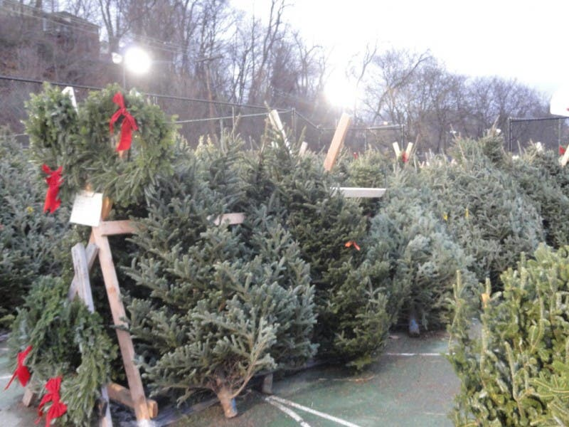 KO Band Christmas Tree Sale, Now in Dormont Park-0 Park | Dormont, PA Patch