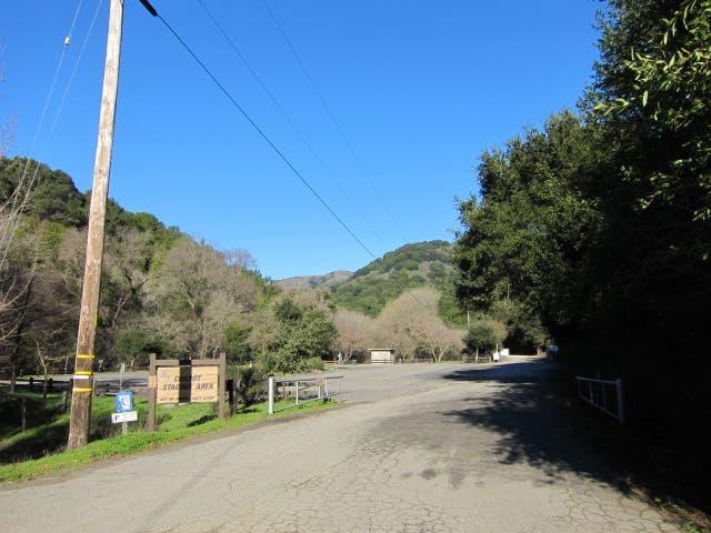 C.V. Christmas Tree Farm Re-Opens
