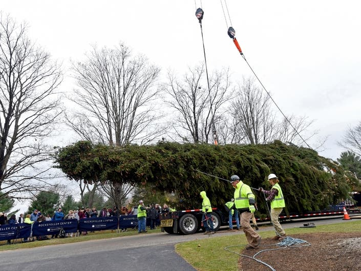 Rockefeller Center's 2019 Christmas Tree Arrives In NYC Saturday | Midtown, NY Patch