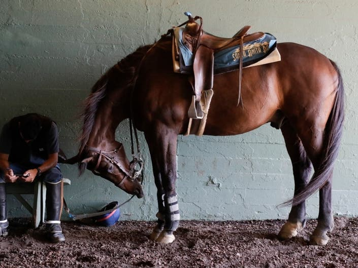 LA Looks To Ban Horse Racing