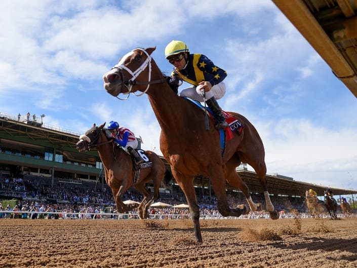Covfefe Wins 1 Million In Breeder S Cup Event Arcadia