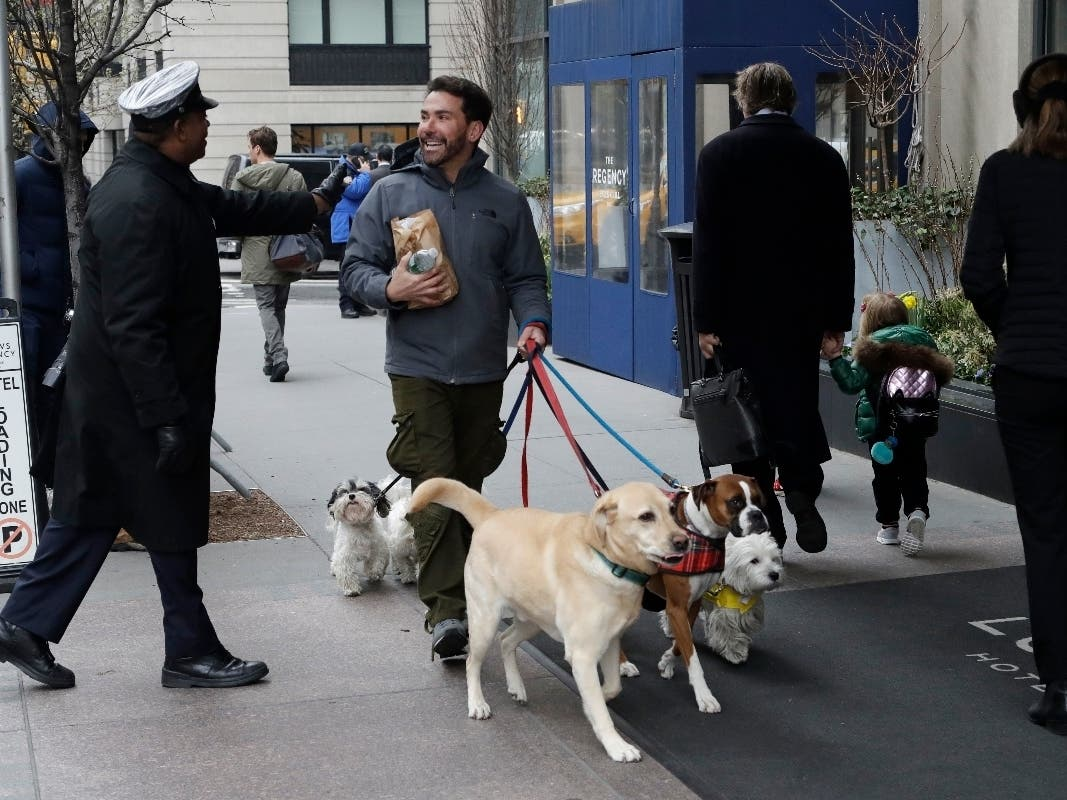Here S Where Nyc Pet Lovers Should Search For Apartments New York City Ny Patch