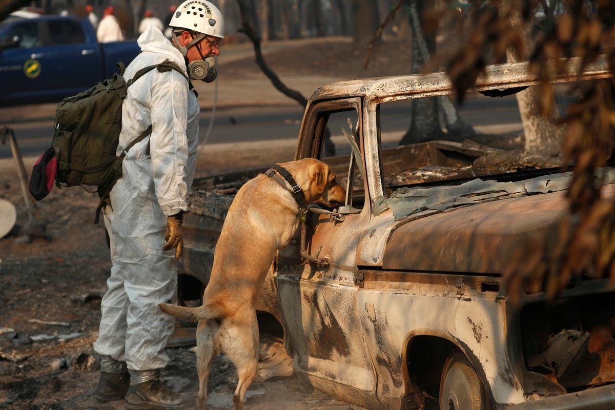 Camp Fire: 81 Dead, Hundreds Missing, More Evacuations Lifted