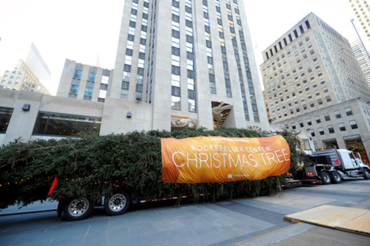 Rockefeller Christmas Tree Arrives In Manhattan For 2017 Holidays | Midtown Manhattan, NY Patch