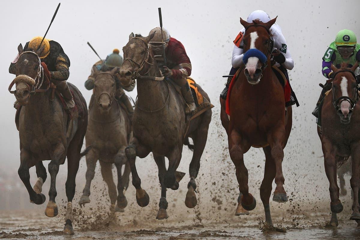 horses running in preakness 2020