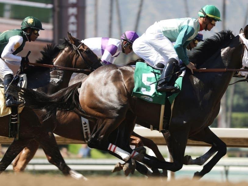 30th Horse Dies At Santa Anita Track Hall Of Fame Trainer