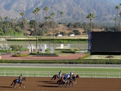 More Santa Anita Park Horse Deaths: Track Refuses To Halt