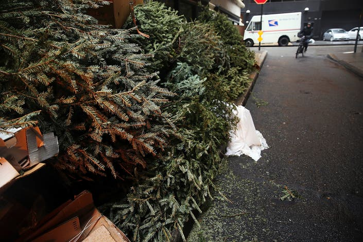 Here's How To Get Rid Of A Christmas Tree In NYC | New York City, NY Patch