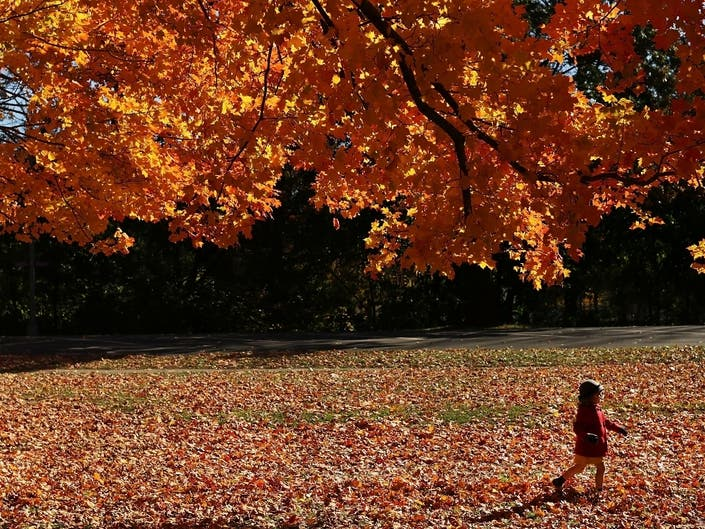 NYC Weather: Chilly Fall Temps Finally On The Way
