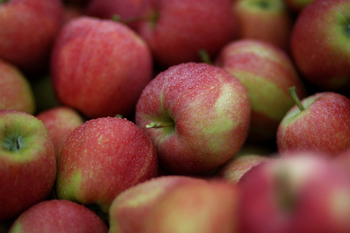 lincoln square apple fest 2020