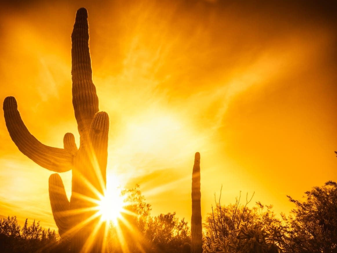 Excessive Heat Warning Extended For Phoenix Area: NWS