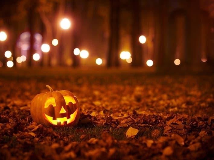 Halloween 2020 Little Boy Julin Halloween Haunts, Fun & Pumpkin Patches 2020: San Diego County