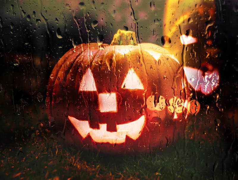 Halloween 2020 Times At The Grove Oct 23 | Jack O' Lantern Jamboree & Movie   Halloween 2020: Garden