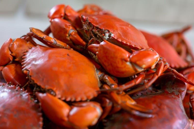 Solano Realtors Crab Feed To-Go Order Deadline 2021: Vallejo