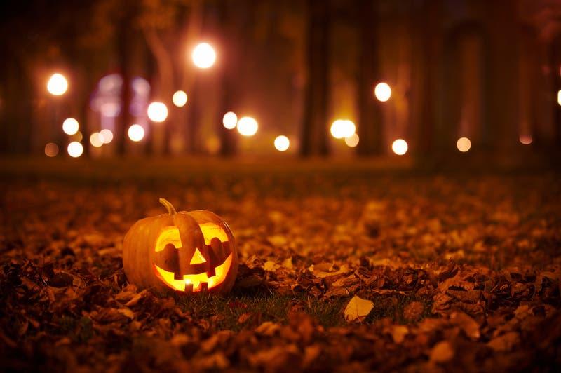 All Hallow's Art Fest - Halloween Craft Show 2021: Petaluma