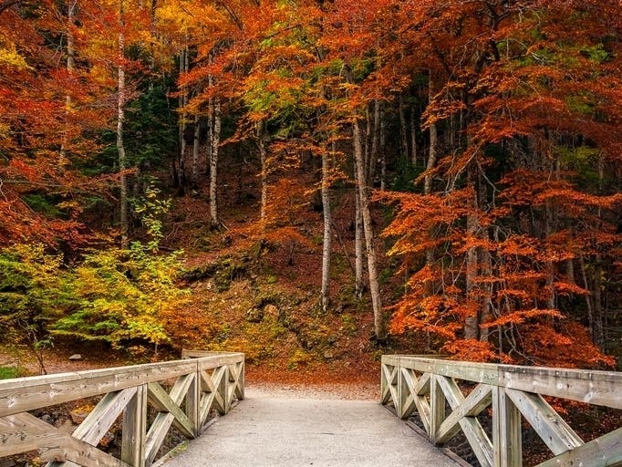 Best Pennsylvania Hiking Trails To See Fall Colors