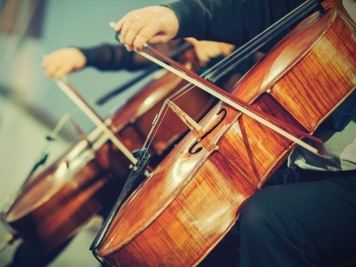 Temecula Valley Symphony To Perform 'Carnival Of Music'
