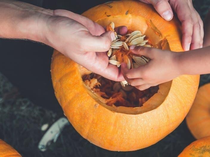 1,000 Jack OLanterns Take Over Governors Island For Halloween