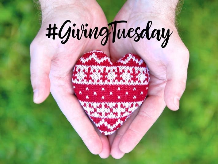 Giving Tuesday 2020 In Anne Arundel County: How You Can Help