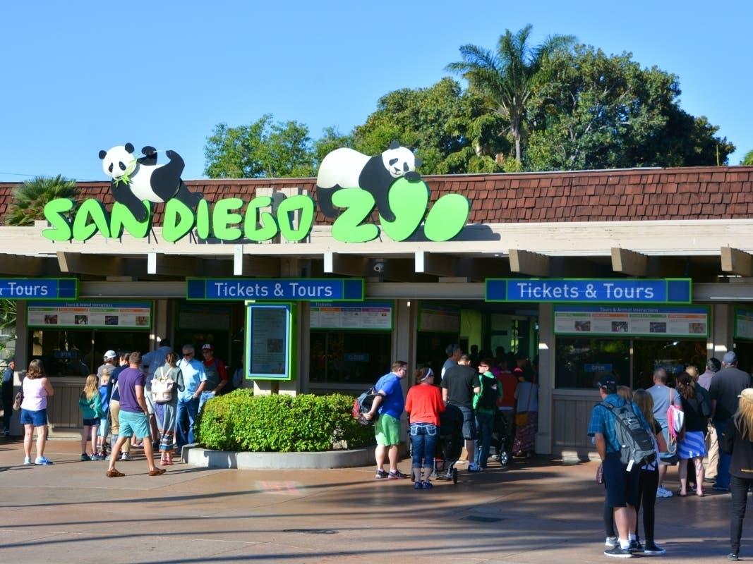 San Diego Zoo Christmas 2021 San Diego Zoo Safari Park To Close Due To Coronavirus San Diego Ca Patch