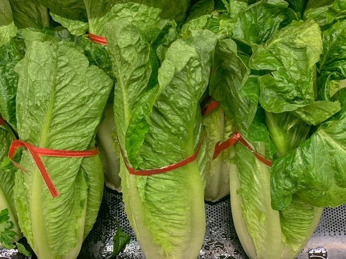 Romaine Lettuce E. Coli Outbreak Spreads To Florida