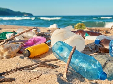 Volunteers are needed for a beach cleanup planned in Palos Verdes this month.