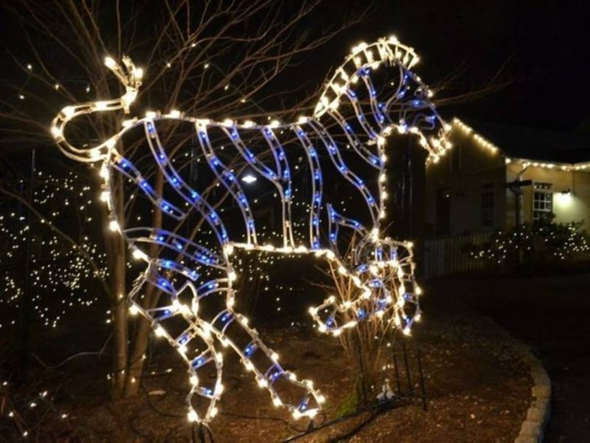 Things To Do In Nj For Christmas.Nine Things To Do Around Nj During Holiday Break Chatham
