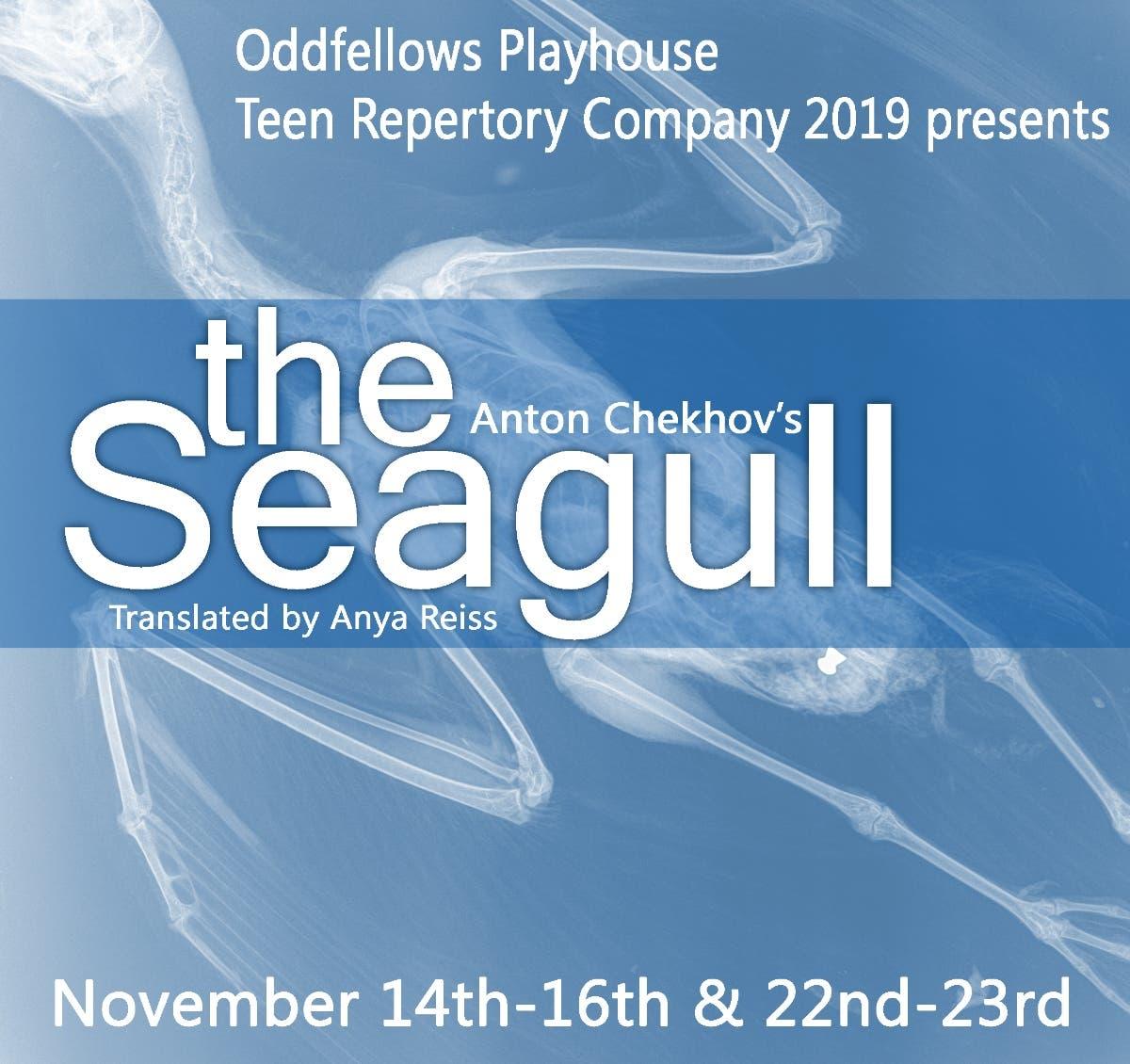 Nov 16   The Seagull by Anton Chekhov   Middletown - Patch.com