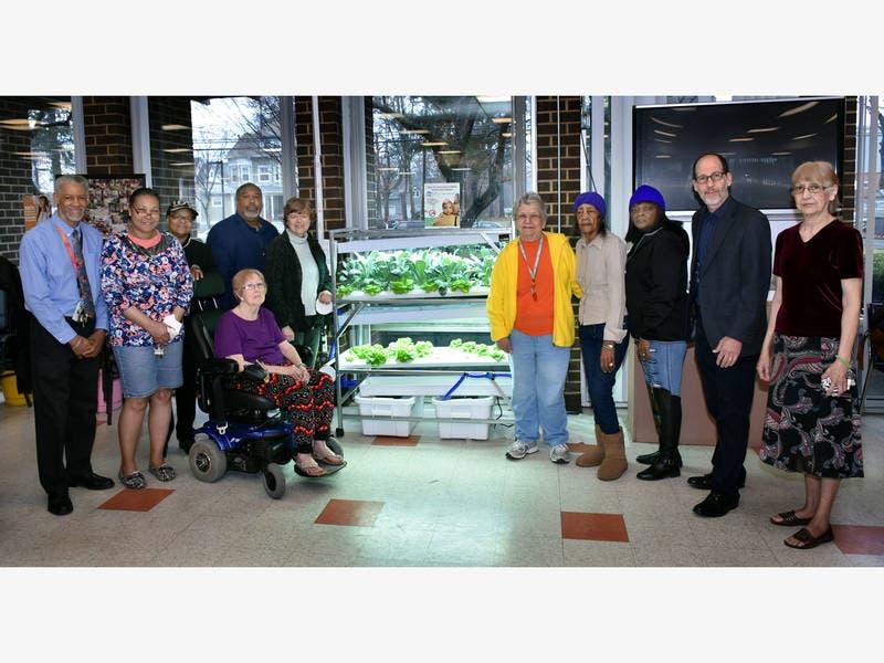 Hydroponic Vegetable Garden Brightens Up Senior Residence