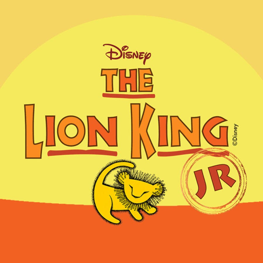 Image result for lion king jr