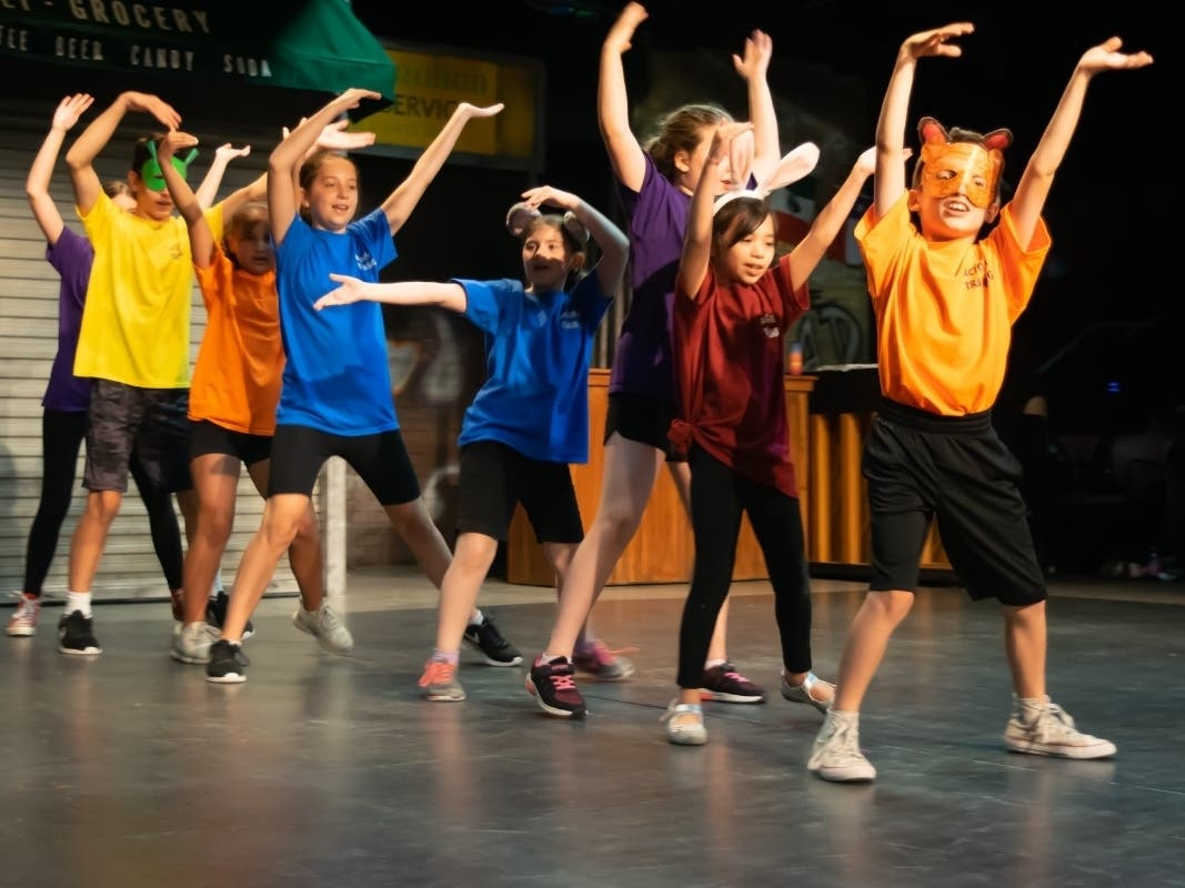 Playhouse Theatre Academy Announces Youth Programs