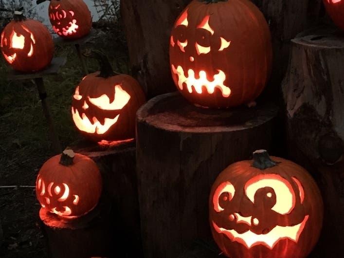 Lambertville Nj Halloween Pumpkins 2020 What Will Halloween In Newtown Look Like In 2020? | Newtown, PA Patch