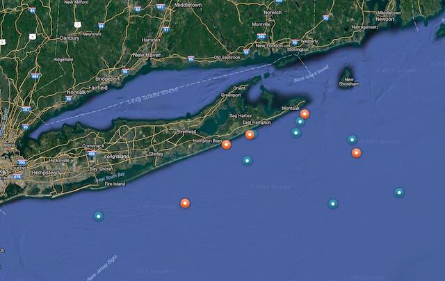 Several New Shark Pups Tagged Off Long Island Coast | East Hampton