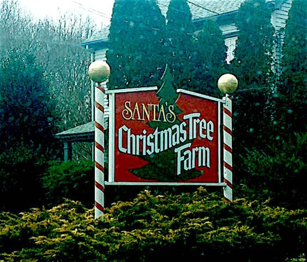 Santa's Christmas Tree Farm For Sale In Cutchogue | North ...