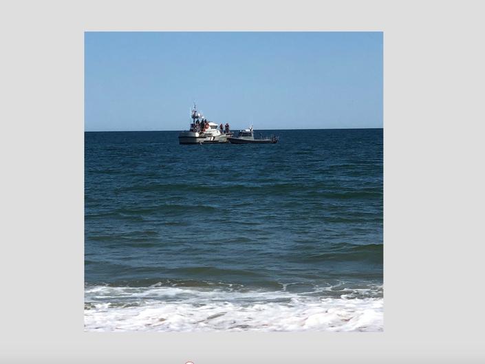 Humpback Whale Entangled In Net Breaks Free In Hamptons