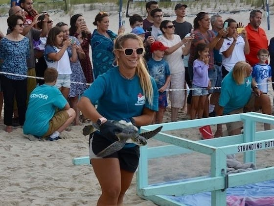 New Name For Riverhead Foundation Plus Sea Turtle Release