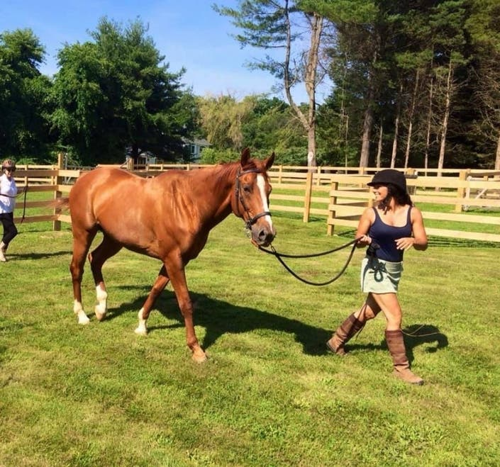Horse Reportedly Related To Secretariat In Dire Need Of Home