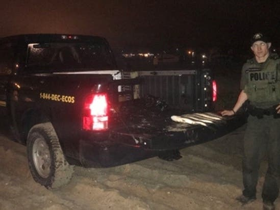 Crackdown On Fisherman Catching Undersized Fish Nets Violations