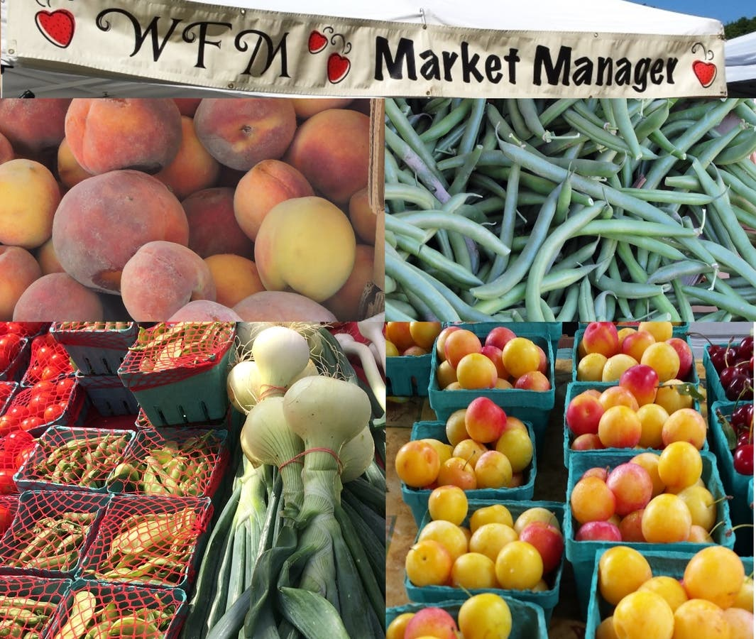 All the News for the August 11 Wakefield Farmers Market Day