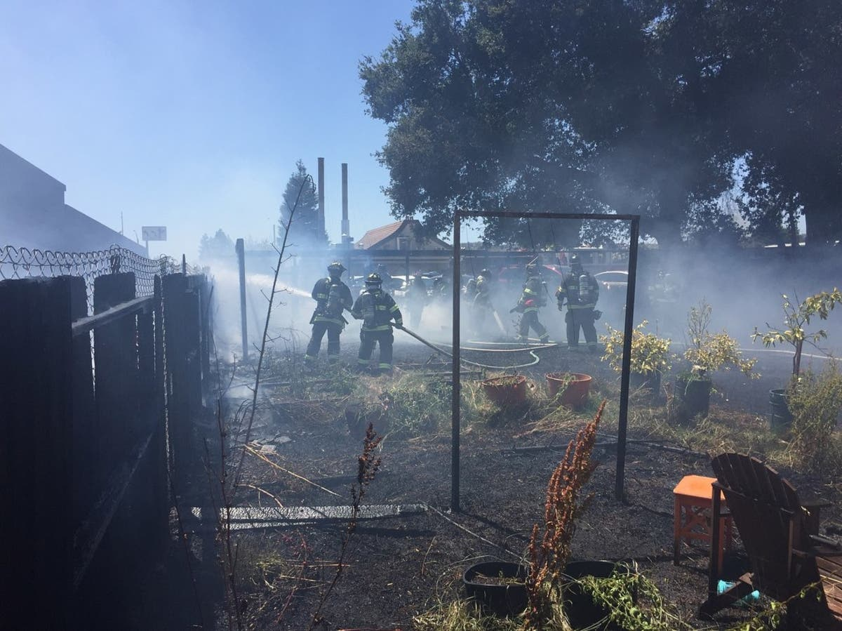 Firefighters Stop Vegetation Fire In Castro Valley Thursday
