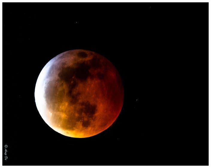 Photo: Super Blood Wolf Moon Eclipse