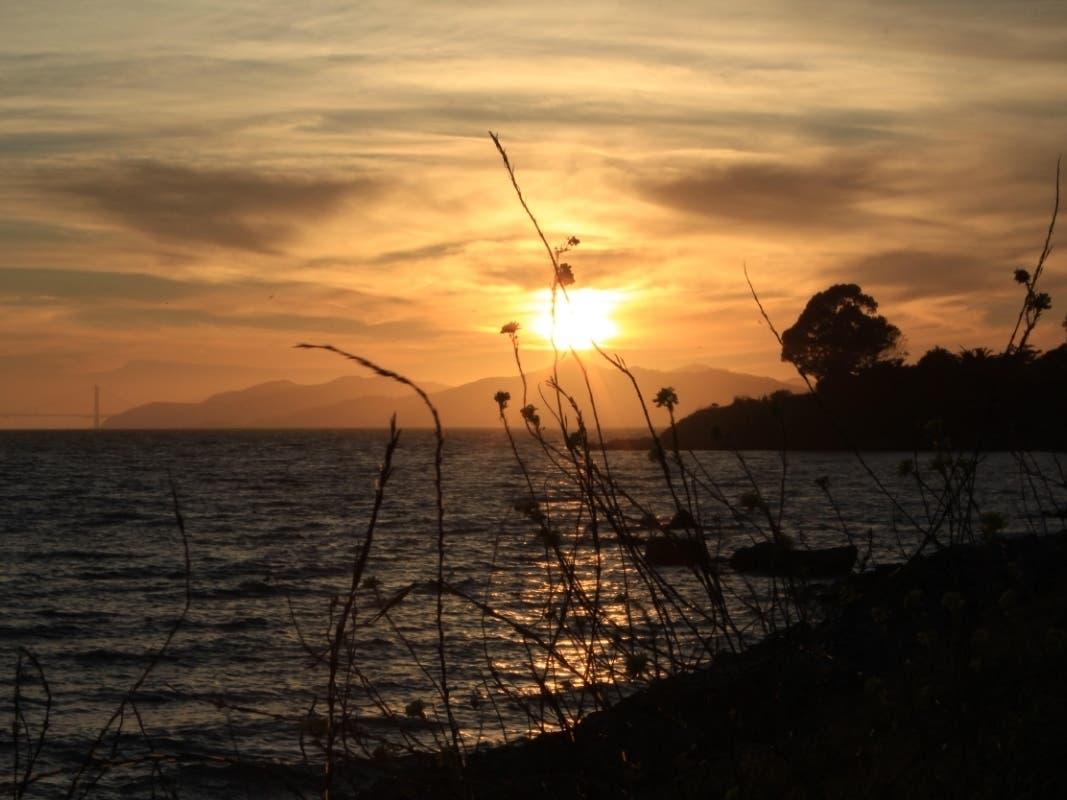 Reflected Sunset: Photo Of The Day | Alameda, CA Patch