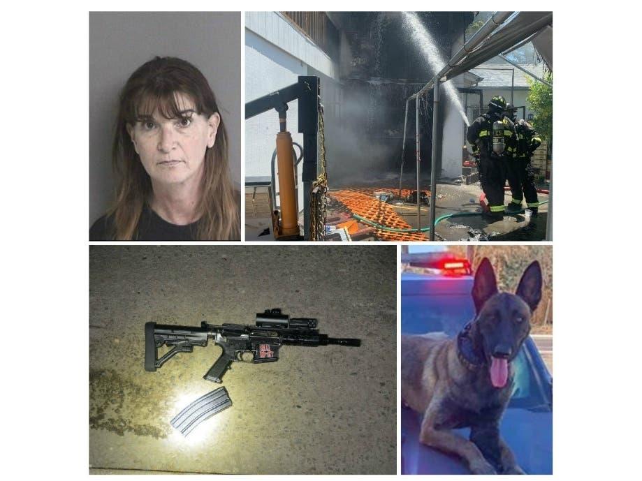 Deadly OIS | Fatal Freeway Crash: Alameda, East Bay Police Log