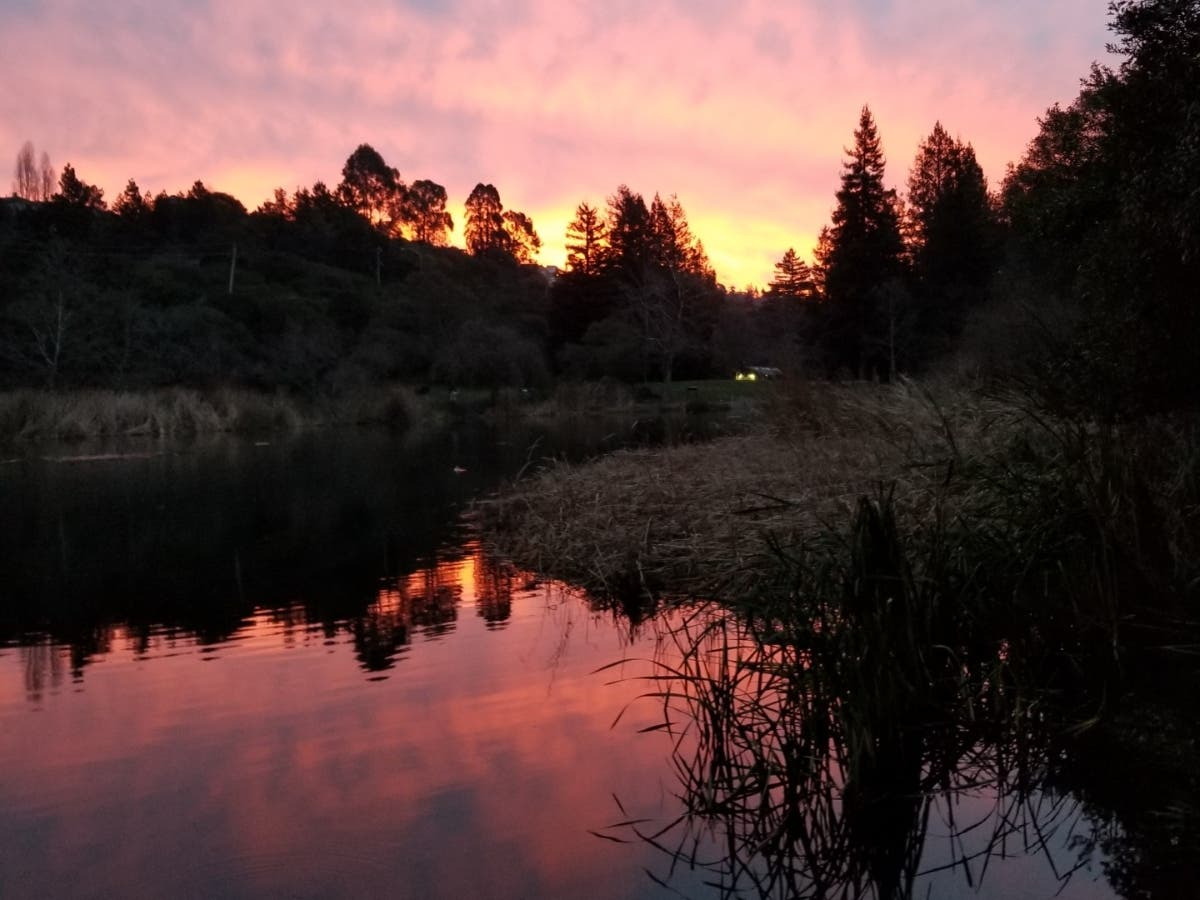 Lake Temescal: Photo Of The Day
