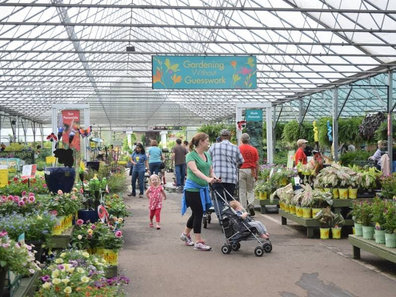 Pike Nurseries To Open In Milton