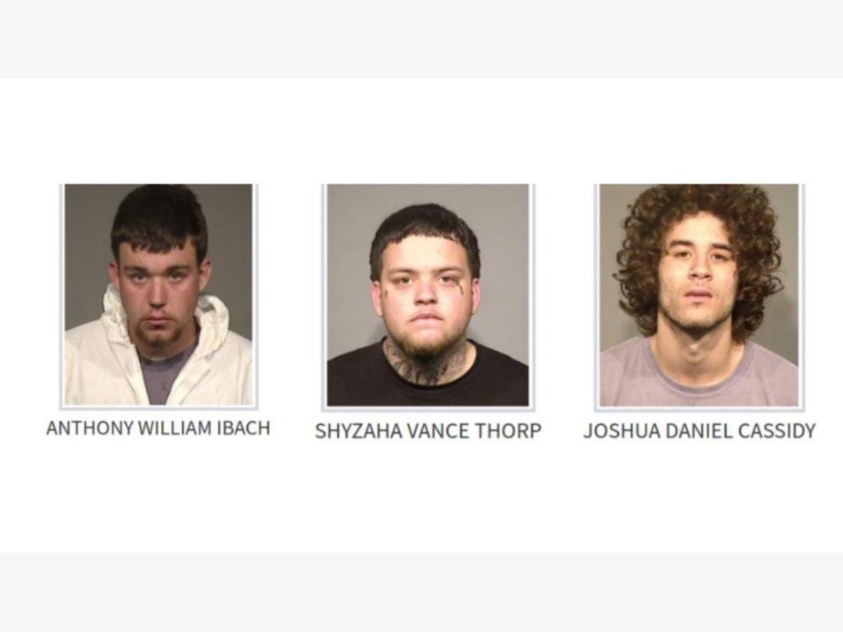 2 More Arrested In Stabbing Death Of Sebastopol Teen: Sheriff