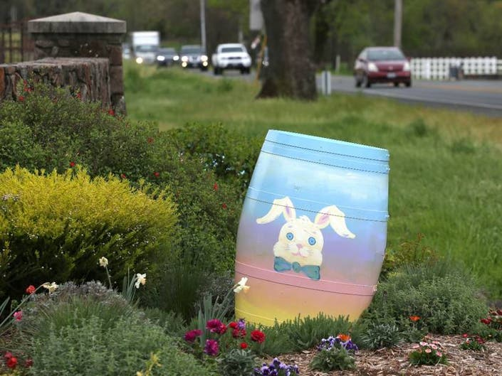 Easter Bunny Sighting In Sonoma Wine Country: Photos Of The Week