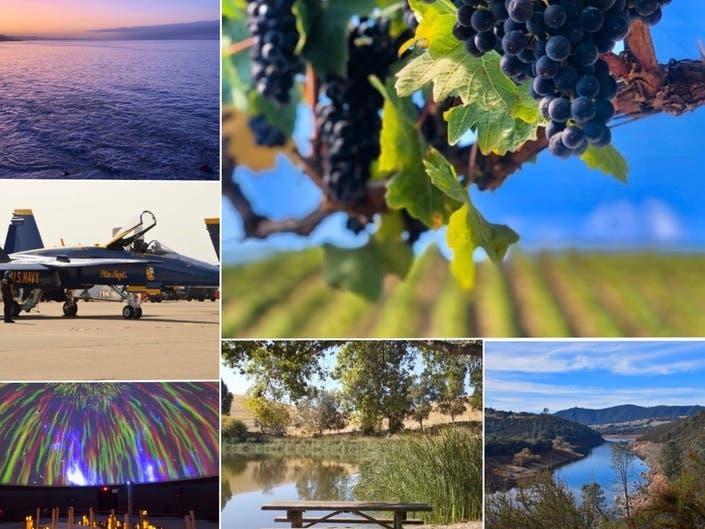 Blue Angel | The Bu Life | Peaceful Park, Vineyard: CA In Photos