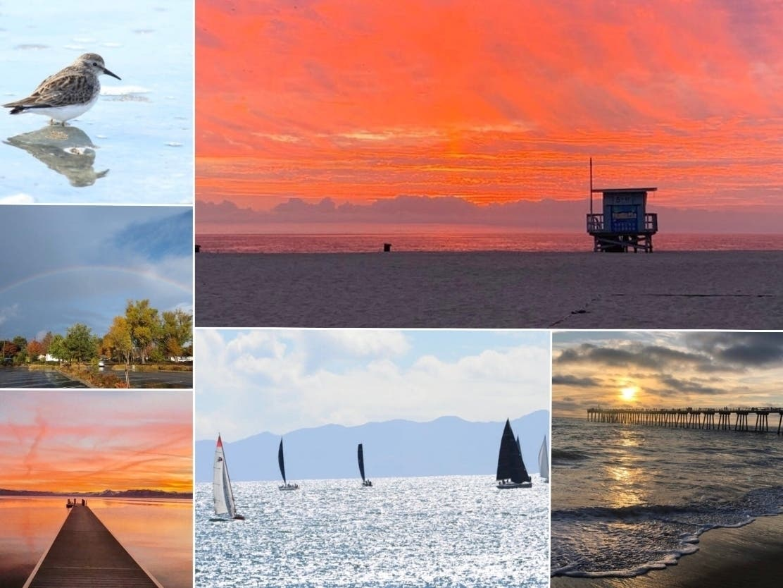 Orange Sherbet Sky; Sunny Harbor; Tahoe Sunset: CA In Photos