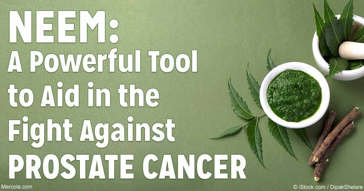 Neem Shows Promise in Prostate Cancer Treatment | Ramsey, NJ